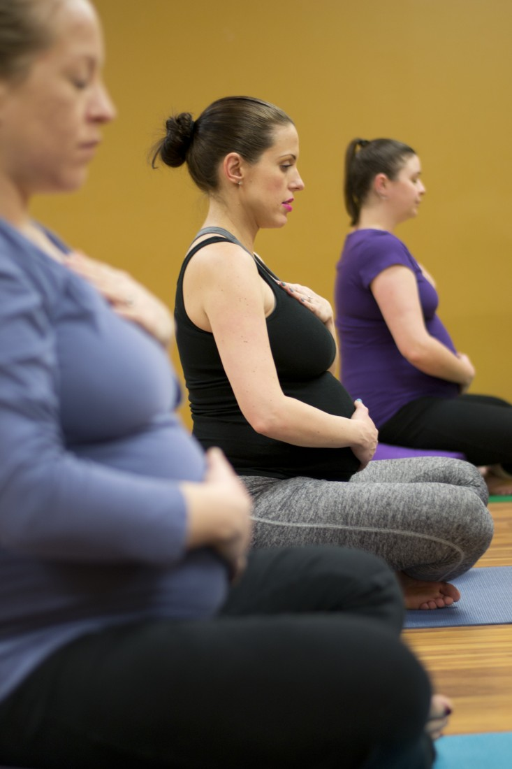Prenatal Yoga Classes Michigan | Elise Bowerman - Prenatal Yoga Specialist - DSC_8699